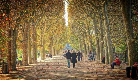 The color of autumn in Jardin des Plantes | © Falcon® Photography/WikiCommons