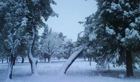Frosty Park Podgorica