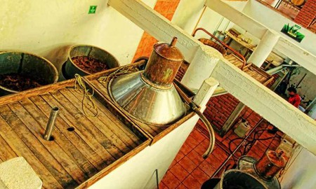 Mezcal Distillery