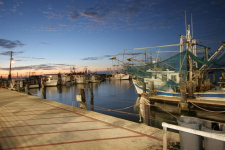 Shrimp Boats In Biloxi Xa9 W Flickr