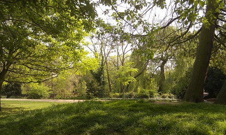 Peckham Nature © kanshiketsu / Flickr