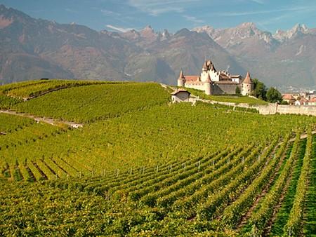 Swiss Vineyards |© Mark Goebel/Flickr