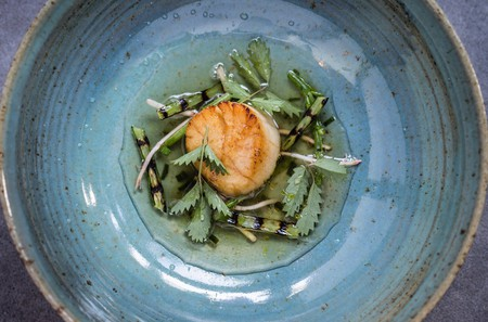 Scallop, Drummond House garlic scap, samphire, ham hock, seaweed broth