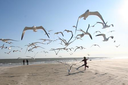 Galveston   © Ed Schipul/Flickr