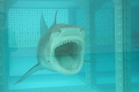 Shark Attack, Damien Hirst | © Kecko / Flickr