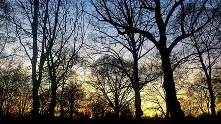 Dawn at Lille Park | ©Aku Seru/Flickr