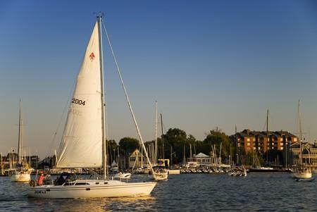 Annapolis Harbor © Jeff Weese