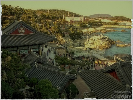 Late Afternoon at Haedong Yonggung, Busan, South Korea © Chris Wary