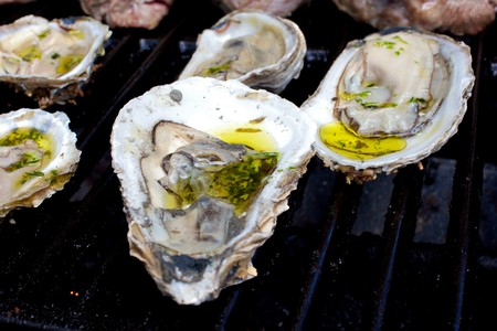 Chargrilled Oysters on the Grill