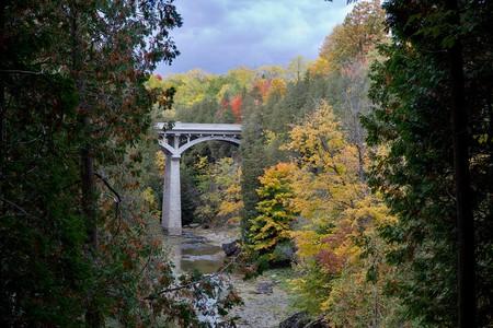 Fall Colors in the Elora Gorge   © Artur Staszewski/Wikicommons