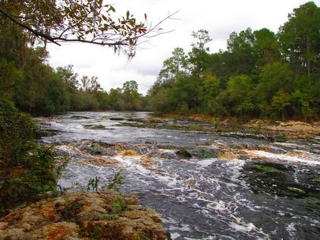 Suwanee River   © B A Bowen Photography/WikiCommons