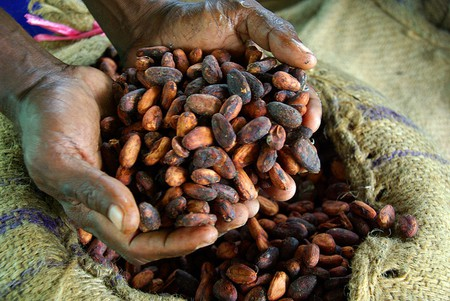 Cocoa Beans | © Department of Foreign Affairs and Trade/Flickr