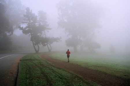 Golden Gate Park | © Michael Fraley/Flickr