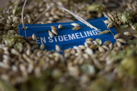 Barley Grains | © En Stoemelings
