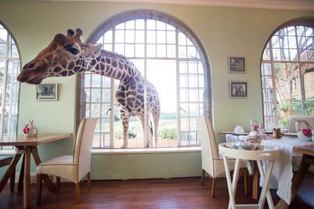 Giraffe Manor, Kenya | Courtesy The Safari Collection