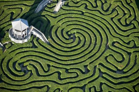 Longleat Maze, Wiltshire | © Jason Hawkes