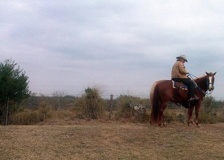 Cowboy at King Ranch | © Ty/Flickr/Flickr