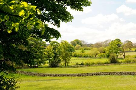 High Nature Value Farmland In England | © David Hill/WikiCommons