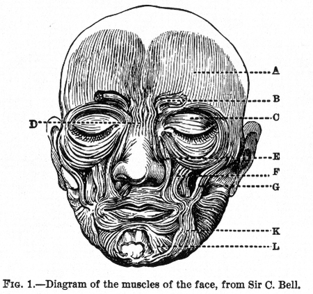 Expression of the Emotions Figure 1 | Public Domain/Wikicommons