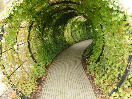 Alnwick Garden, Northumberland | ©Graeme/Flickr
