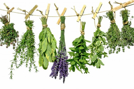 Fresh herbs | © SMARTSign Dictionary/YouTube