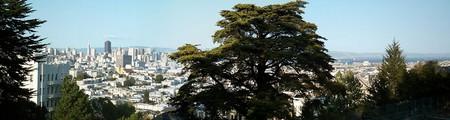 Buena Vista cover © Guliolopez/Wikipedia