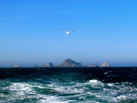 Farallon Islands © Jeff Gunn/Flickr