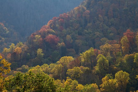 © Fog and Color - The Great Smoky Mountains National Park, David Brossard/Flickr
