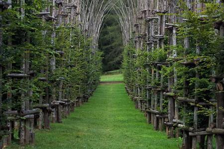 Cattedrale Vegetale | © obliot/Flickr
