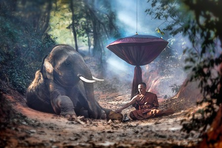 The old monk with a young elephant in the forest © Ninja SS / Shutterstock