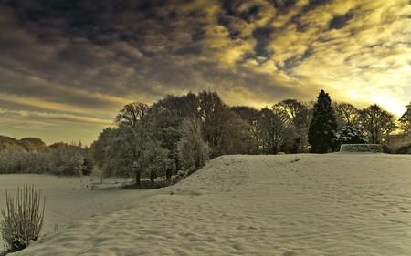 Cathkin Braes | © Colin Macdonald/Flickr