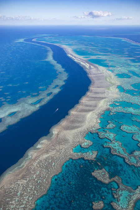 Great Barrier Reef | © William Patino