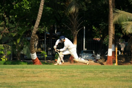 Cricket | Public Domain Image