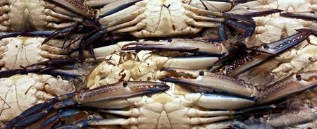 Seafood © llee_wu / Flickr
