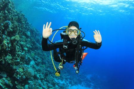 Diving in the Caribbean Sea Rich © Carey/Shutterstock
