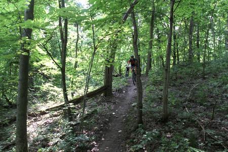 Mountainbike trail in the Belgian Ardennes   © soozed / Flickr