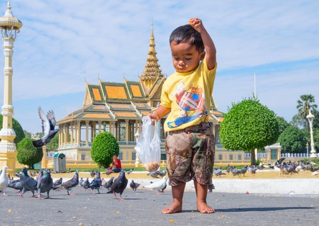 A child feeds the pigeons that gather outside the Silver Pagoda