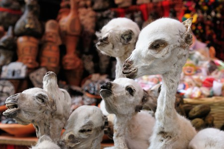 La Paz' spooky Witches' Market has all kinds of potions and voodoo charms