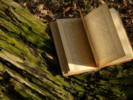 Books |© Bastetia / Flickr