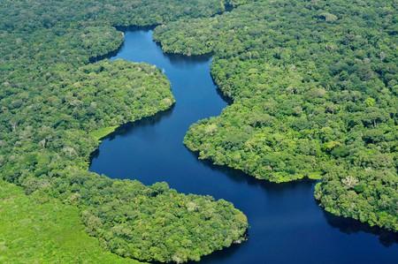 Amazon rainforest | © Neil Palmer/CIAT/Flickr