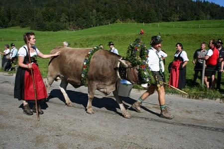 Austrian Stereotypes |  © almpixel / pixabay