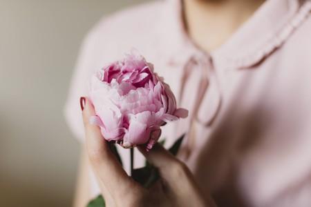 Beautiful Flower   © Pexels