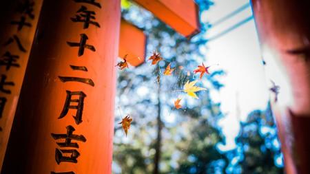 Reasons to Visit Kyoto| ©  Mian  Flickr