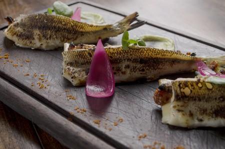 Silverside fish