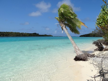 A white sand beach on Ouvea, New Caledonia   © Thomas Ballandras / Flickr