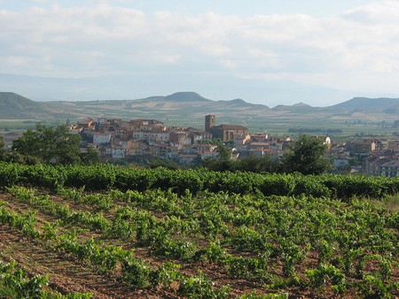 La Rioja wine region, Spain | © Gurrea / Wikimedia Commons