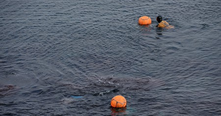 Haenyeo, the female divers of Jeju Island, in action | © KoreaNet / Flickr