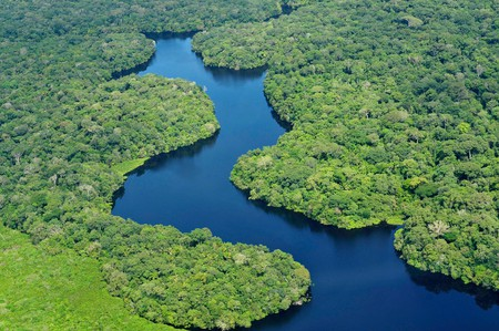 Amazon - Brazil   © Neil Palmer/CIAT-CIFOR/Flickr