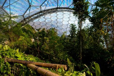 The Eden Project | © Francesco Carucci/Shutterstock