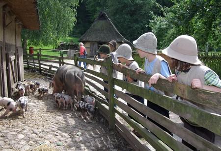 Kiekeberg open-air museum | © Stiftung Freilichtmuseum am Kiekeberg